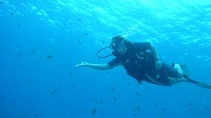 Scuba Diving-Le Marin-First scuba dives in Martinique-5