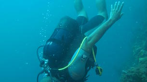 Scuba Diving-Le Marin-First scuba dives in Martinique-6