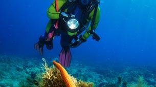 Scuba Diving-Kefalonia-Adventure dives in Kefalonia-2