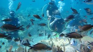 Scuba Diving-Kefalonia-PADI TecRec diving course in Kefalonia-5