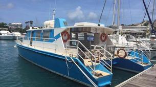 Scuba Diving-Cousteau Reserve-Stage de Plongée FFESSM dans la Réserve Cousteau en Guadeloupe-4
