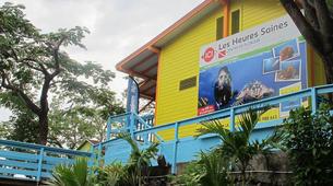 Plongée sous-marine-Guadeloupe-Plongées Exploration Guidées ou Autonomes à l'Est de la Guadeloupe-3