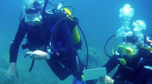 Scuba Diving-La Maddalena-Adventure dives in the La Maddalena National Park-3