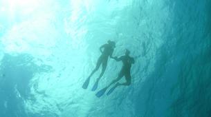 Snorkeling-Saint Martin-Snorkeling boat excursion in Saint Martin-6