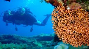 Scuba Diving-Corfu-Try Scuba Diving in Corfu-4