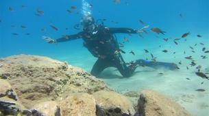 Scuba Diving-Rethymno-Adventure dives in Crete-3
