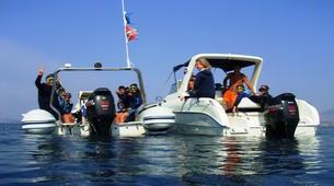 Scuba Diving-Corfu-Try Scuba Diving in Corfu-5