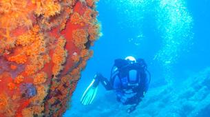Scuba Diving-La Maddalena-Adventure dives in the La Maddalena National Park-8