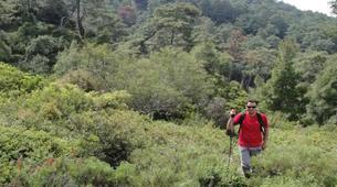 Hiking / Trekking-Rhodes-Trekking tours in Rhodes-4