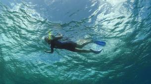 Snorkeling-Saint Martin-Snorkeling boat excursion in Saint Martin-2