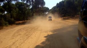4x4-Sierra de las Nieves Natural Park-Jeep Safari excursion in Sierra de las Nieves Natural Park, near Marbella-3