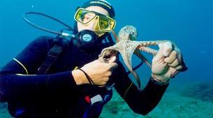 Scuba Diving-Corfu-Try Scuba Diving in Corfu-3