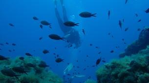 Scuba Diving-L'Île-Rousse-First scuba dive in l'Ile Rousse, Corsica-3