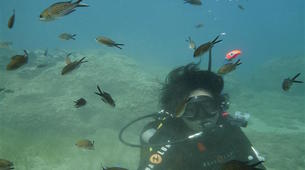 Scuba Diving-Rethymno-Discover scuba diving in Rethymno-5