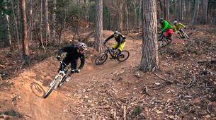 VTT-Mont Ventoux-VTT Enduro et Downhill dans le Bike Park de Nyons-3