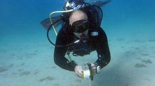 Scuba Diving-Porto Rafti-PADI Advanced Open Water diving course in Porto Rafti, Athens-2