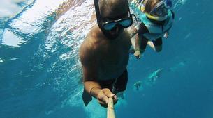 Snorkeling-Bel Ombre-Nager avec les Dauphins sur la Côte Ouest de l'Île Maurice-3