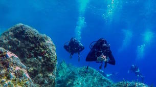 Scuba Diving-Ithaca-Adventure dives in Ithaca-1