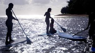 Stand up Paddle-Bel Ombre-Stand up paddle excursion in Mauritius-3