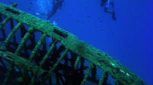Scuba Diving-Ithaca-Adventure dives in Ithaca-6