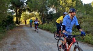 Mountain bike-Sierra de las Nieves Natural Park-MTB Tour in Sierra de las Nieves Natural Park, near Marbella-6