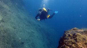 Scuba Diving-Porto Rafti-PADI Advanced Open Water diving course in Porto Rafti, Athens-6