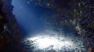Scuba Diving-Porto Rafti-PADI Advanced Open Water diving course in Porto Rafti, Athens-4