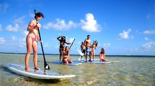 Stand up Paddle-Bel Ombre-Stand up paddle excursion in Mauritius-1