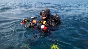 Scuba Diving-Faial-Guided adventure dives in Faial, Portugal-2