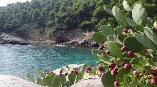 Scuba Diving-Chalkidiki-Discover Scuba Diving in Halkidiki-3