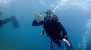 Scuba Diving-Chalkidiki-Discover Scuba Diving in Halkidiki-2