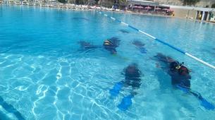 Scuba Diving-Faial-Scuba diving PADI courses in Faial, Portugal-2