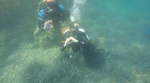 Scuba Diving-Lefkada-Discover Scuba Diving in Lefkada-6