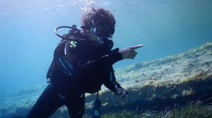 Scuba Diving-Mykonos-Scuba Diving PADI courses in Mykonos-4