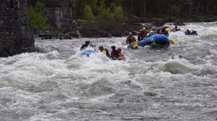 Rafting-Hardangervidda National Park-Rafting down the Numedalslågen in Dagali, Norway-5