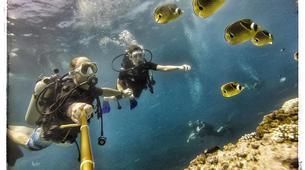 Scuba Diving-Saint-Leu-First dive in the Bay of Saint Leu-1