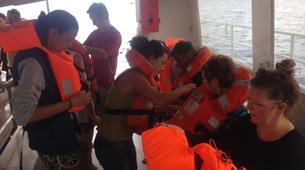 Plongée sous-marine-Réserve Cousteau-Plongées Exploration Guidées ou Autonomes à Basse-Terre, Guadeloupe-4