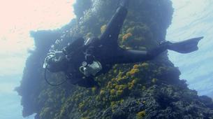Scuba Diving-Tarifa-Discover Scuba Diving in Tarifa-1