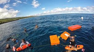 Scuba Diving-Saint-Leu-First dive in the Bay of Saint Leu-3