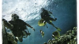 Scuba Diving-Saint-Leu-First dive in the Bay of Saint Leu-4