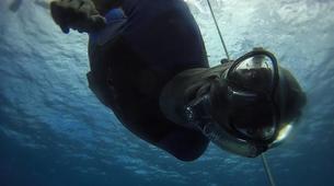 Apnée-La Réunion-Excursions Plongée en Apnée sur les Récifs de l'île de La Réunion-5