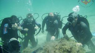 Scuba Diving-Zakynthos (Zante)-Guided adventure dives in Zante, Greece-5