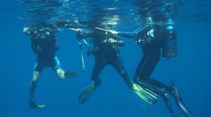 Scuba Diving-Le Marin-First scuba dives in Martinique-2