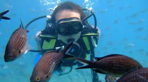 Scuba Diving-Corfu-Discover scuba diving in Corfu-2