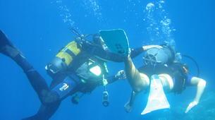 Plongée sous-marine-Porto Ota-Baptême de Plongée à Porto, Corse-1