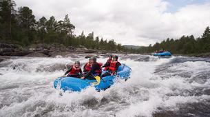 Rafting-Hardangervidda National Park-Rafting down the Numedalslågen in Dagali, Norway-11