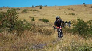 Vélo de Descente-La Réunion-Descente VTT du Mont Maïdo, Ile de la Réunion-4