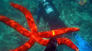 Scuba Diving-Zakynthos (Zante)-Guided adventure dives in Zante, Greece-6