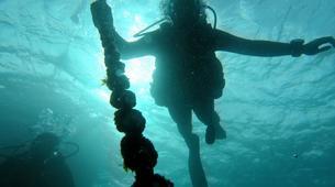 Scuba Diving-Tarifa-Discover Scuba Diving in Tarifa-3