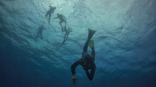 Apnée-La Réunion-Excursions Plongée en Apnée sur les Récifs de l'île de La Réunion-4